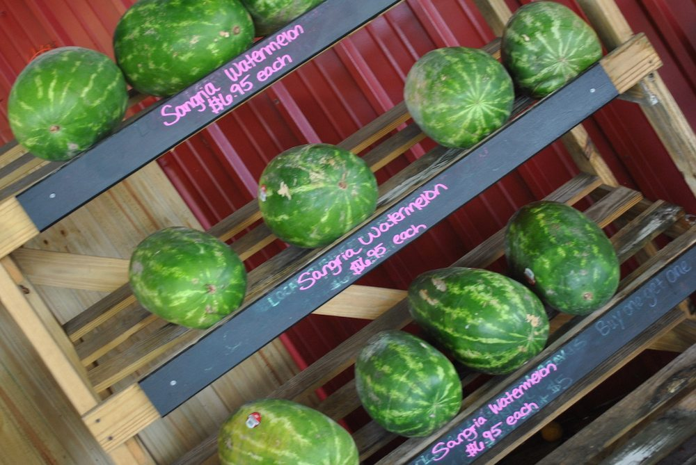 rype_and_readi_watermelon