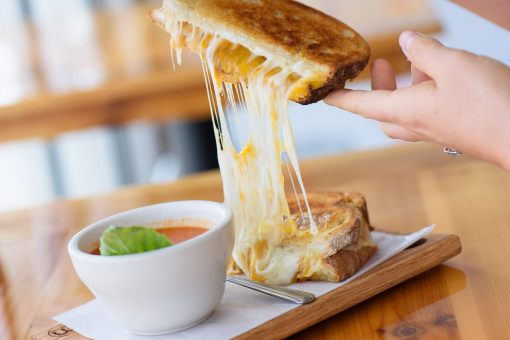 the mouse trap grilled cheese sandwich makers melt st augustine