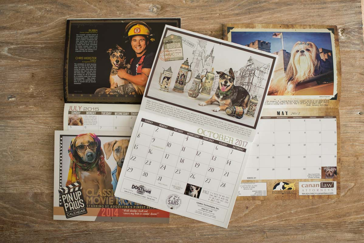 pin up paws calendars from the st augustine humane society
