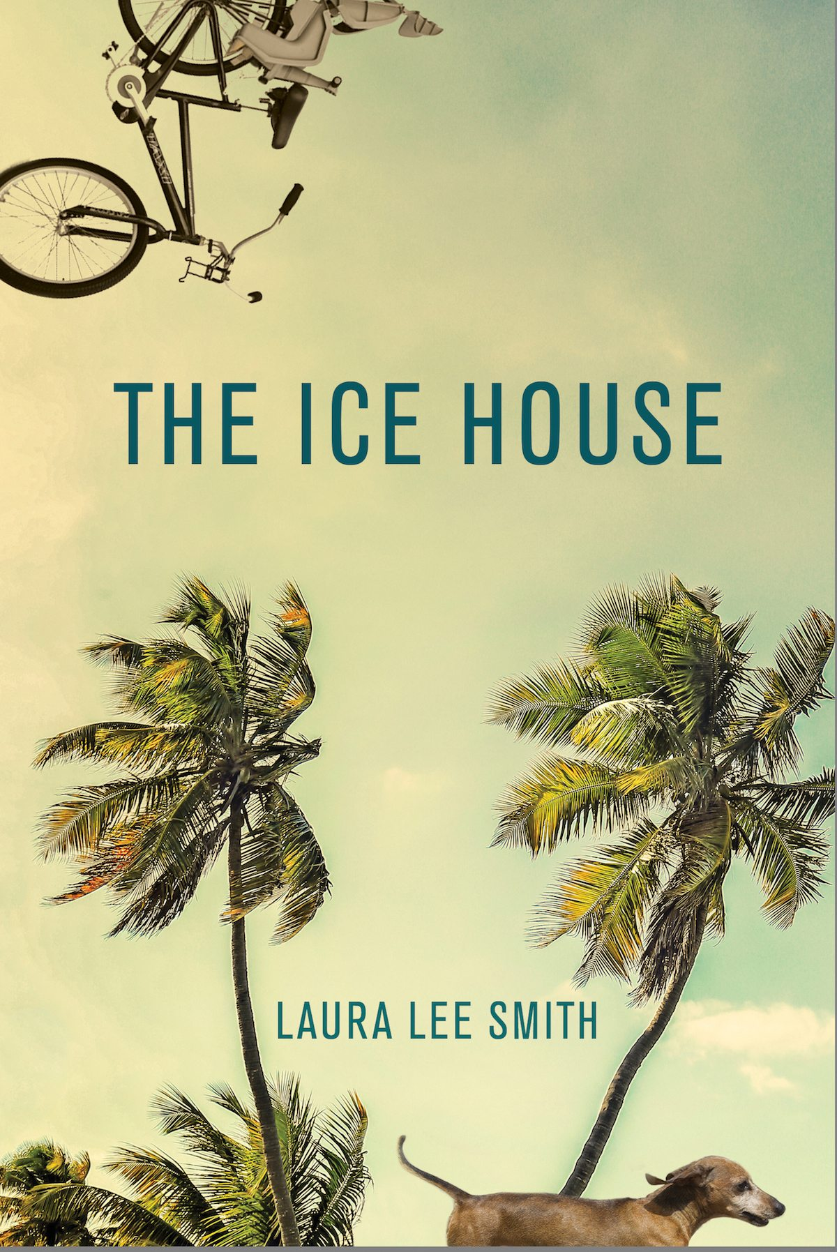 the ice house book cover