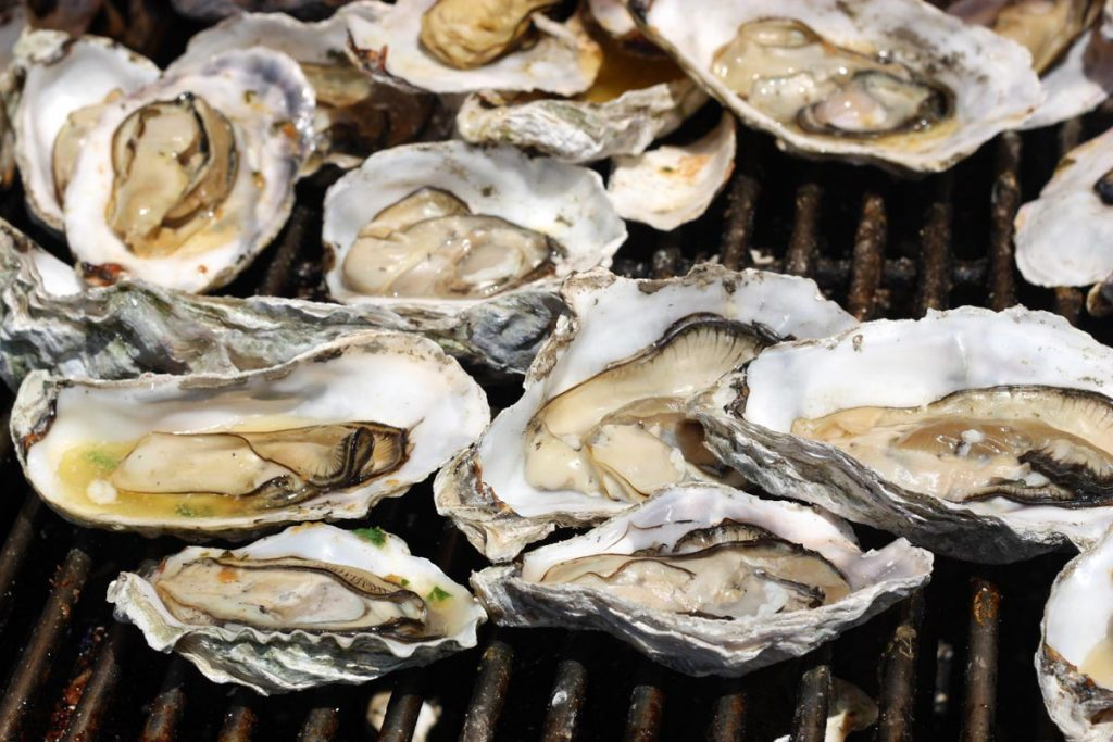 oysters shutterstock image