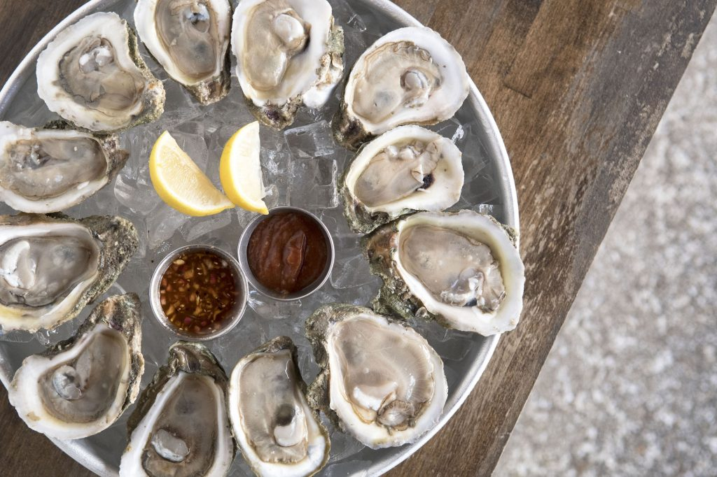 st augustine seafood company offers fresh oysters