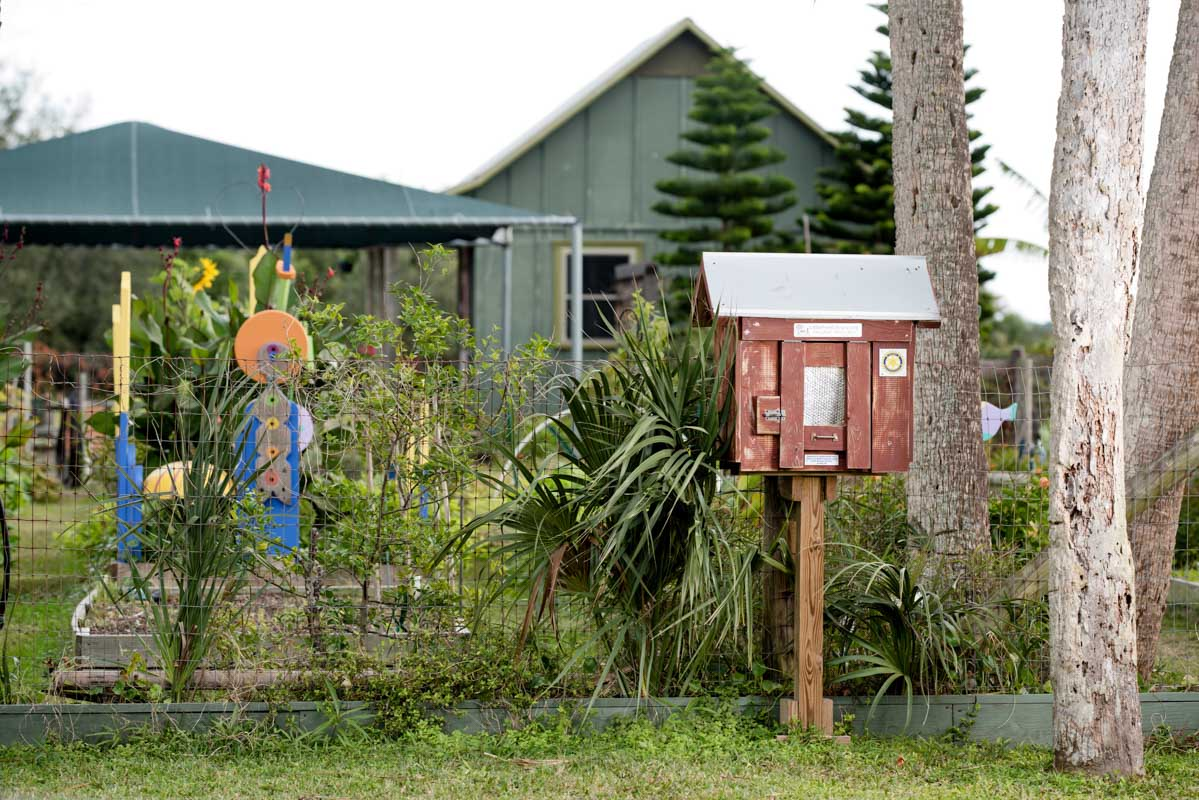 free little library at the lincolnville community garden st augustine