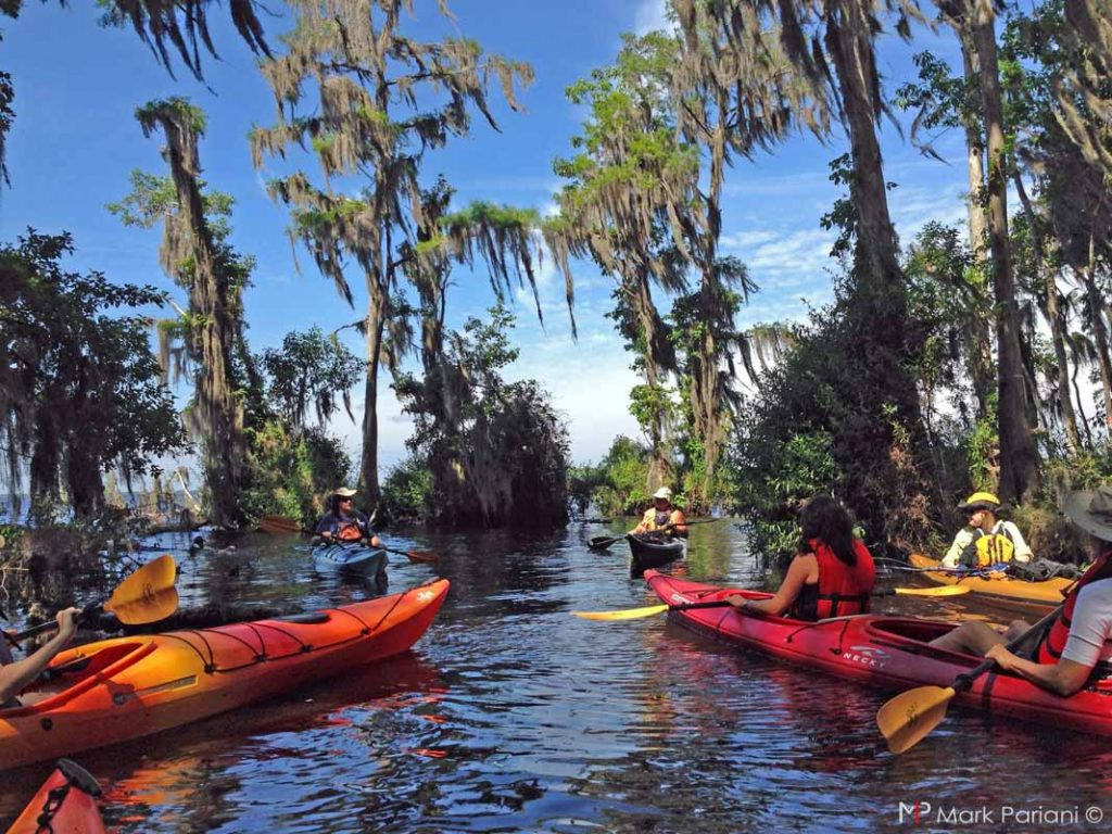 kayak tour st augustine st johns county