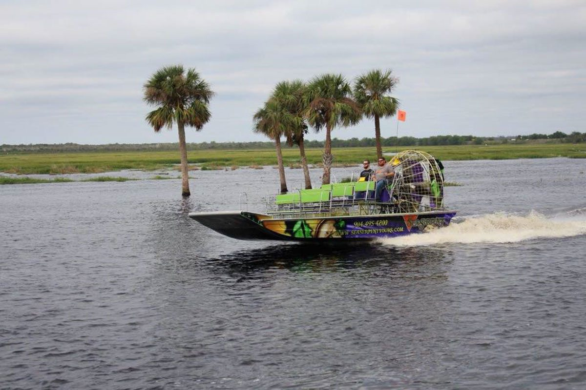Dolphin Water Tours St Augustine