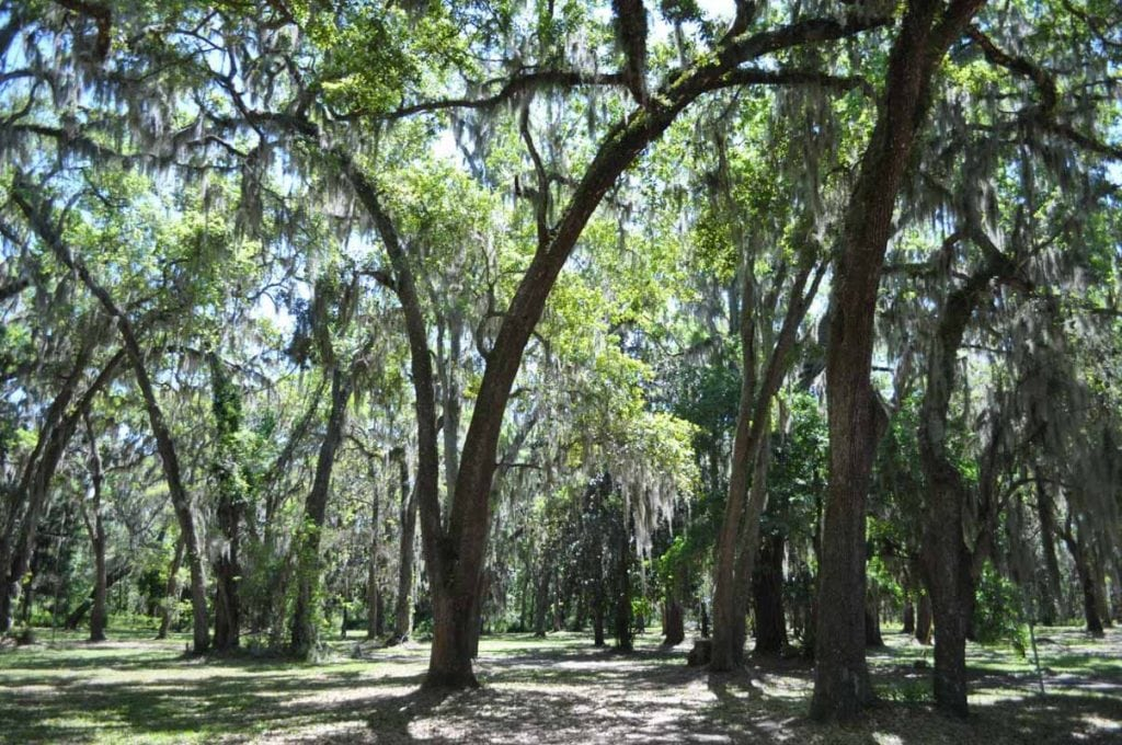 park in st johns county