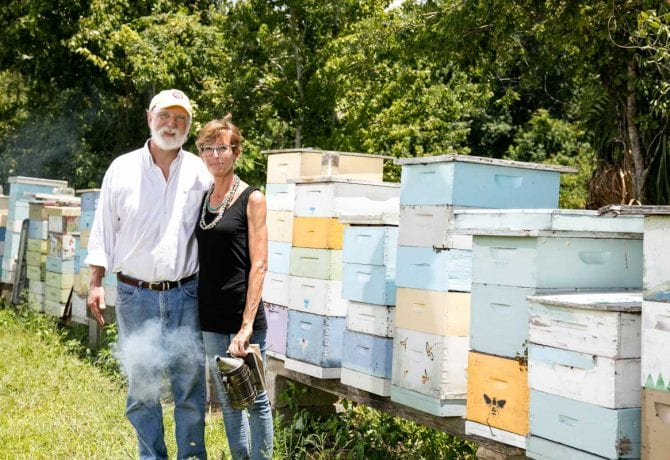 bo sterk and jo sinclair beekeepers st augustine
