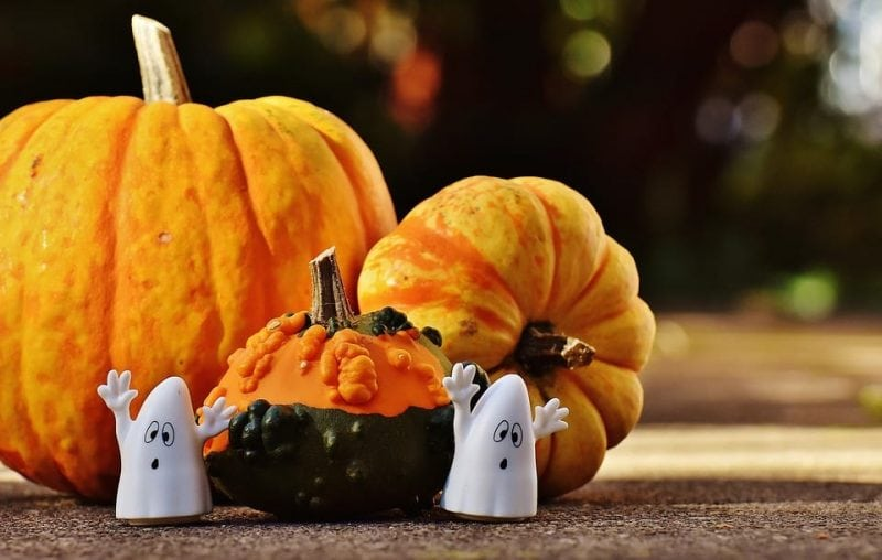 Three Pumpkins and Two Little Ghosts
