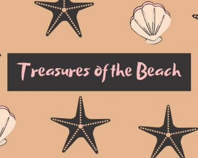 Treasures of the beach event st. Augustine