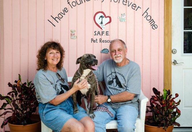 volunteers at safe pet rescue florida