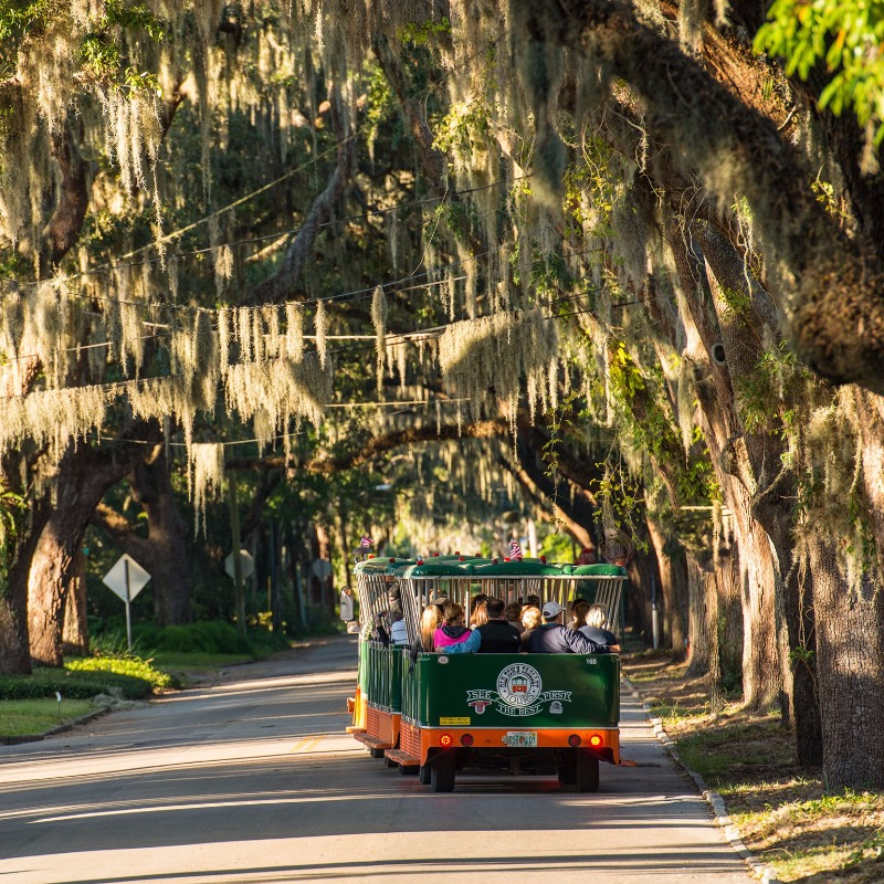 old town trolley tours st. augustine