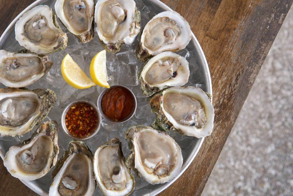 overhead shot of oysters at st augustine seafood company
