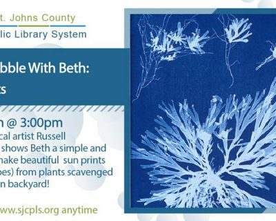 graphic for bubble with beth sun prints st johns county public library